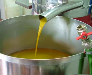 first_cold_press_argan_oil